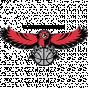 Colorado Hawks