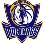 Michigan Mustangs, USA
