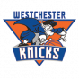 Westchester NBA G-League