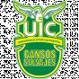 UIC Wild Geese
