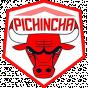 Pichincha Potosi Liga Sudamericana